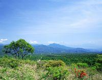 山梨県 美し森