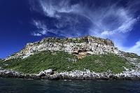 エクアドル ダーウィン島