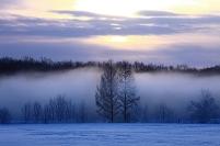 北海道 河西郡 樹氷とケアラシ