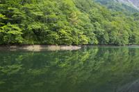 青森県 白神山地に点在する十二湖の鶏頭場の池