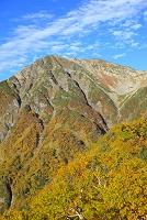静岡県 赤石岳の紅葉と青空