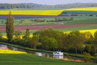 フランス マルヌ・ライン運河と花畑