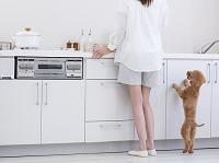 キッチンに立つ女性とトイプードル