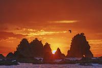 静岡県 蓑掛岩と朝焼け雲と朝日