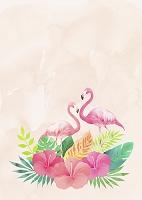 南国の花とフラミンゴ