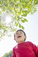 公園で木の枝を見上げて笑う日本人の男の子