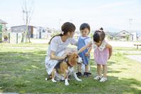 住宅街を犬と散歩する日本人親子