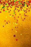 金屏風と落葉のパターン