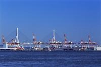 横浜港のガントリークレーンと鶴見つばさ橋