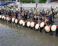 広島県 壬生の花田植え