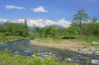 長野県 大出公園より姫川と白馬岳