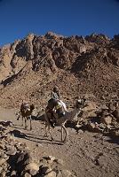 シナイ山 エジプト