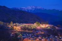 長野県 タカトオコヒガンザクラ咲く高遠城址公園と南アルプス夕景