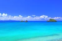 名護湾のビーチ