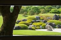 足立美術館 日本庭園 安来市 島根県