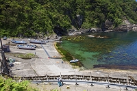 兵庫県 新緑の但馬御火浦 三尾の漁港 ワカメ干し