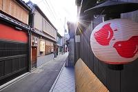 京都府 先斗町 飲食店街