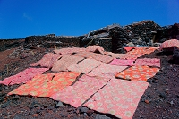 山梨県 富士山頂での布団干し