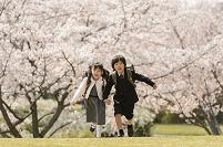 桜の咲く公園で走る小学生