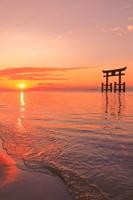 滋賀県 日の出の白髭神社