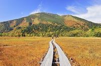 群馬県 尾瀬 上田代から望む紅葉の至仏山と木道