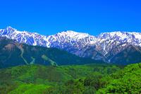 長野県 白沢峠から北アルプス