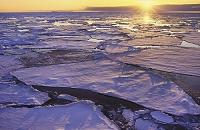 南極 海に溶ける氷