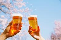お花見 ビール
