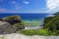 沖縄県 座間味島 海食崖と海岸植生と裾礁 女瀬ノ崎