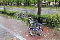 台風の暴風雨で倒れる自転車
