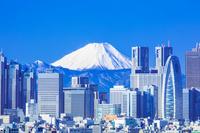 東京都 富士山と新宿高層ビル群