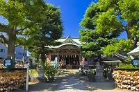 東京都 今戸神社と絵馬