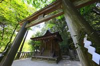 奈良県 石上神宮 摂社出雲建雄神社本殿