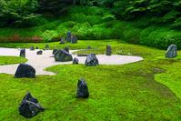 京都府 光明院 庭園