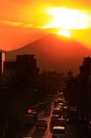 東京都 ダイヤモンド富士と西日に照らされた道