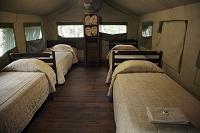 南アフリカ共和国 クルーガー国立公園 テント