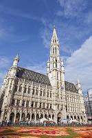 ベルギー ブリュッセル フラワーカーペットフェスティバル