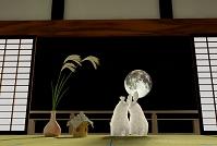 お月見をするウサギカップル