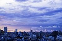 東京 夜明け