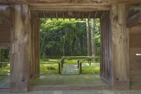 京都府 高桐院(大徳寺塔頭) 門と新緑の庭