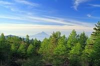 山梨県 八ヶ岳(権現岳)から朝の富士山