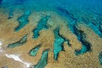 沖縄県 国頭村 沖縄本島最北端・辺戸岬のサンゴ礁