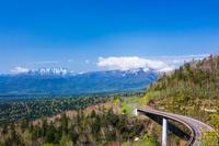 新緑の三国峠