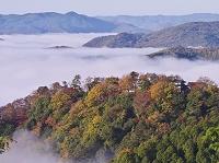 岡山県 備中松山城の雲海