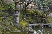 京都府 京都市 庭園 霊鑑寺