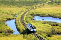 北海道 根室本線の普通列車