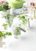テーブルの上のキッチン用品とグラスに飾ったハーブ