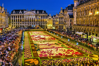 ベルギー グランプラスのフラワーカーペット