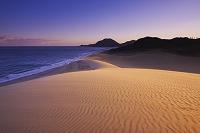 鳥取県 鳥取砂丘の朝