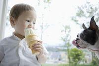 犬とソフトクリームを舐める男の子